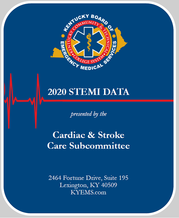 2020 STEMI Incident Report thumbnail